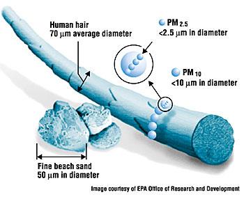Micron Size Chart